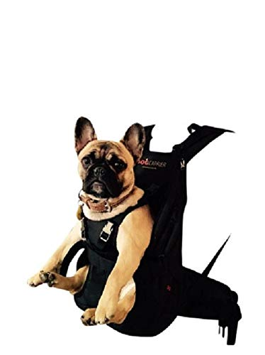 PREMIUM Hundetasche als Hunderucksack / Rucksack für Hunde / Hundetrage / Hundetragetasche / Hunderucksack / Tasche für Hunde / Hundekorb SMALL ROT 5-10 kg