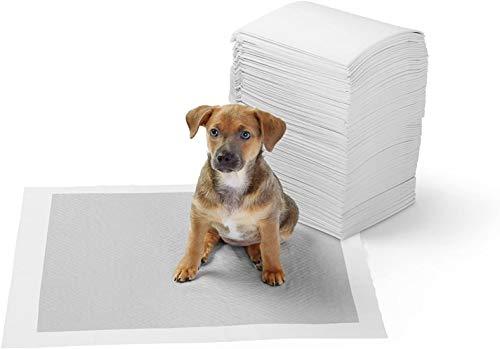 Amazon Basics - Kohlenstoff-Trainingpads für Haustiere und Welpen, Normal - 120 Stück