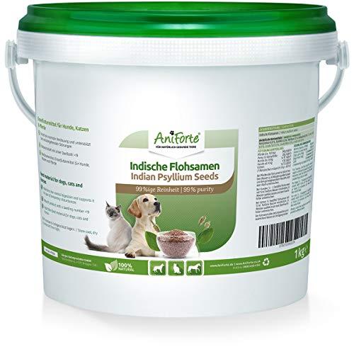 AniForte Flohsamen für Pferde, Hunde & Katzen 1kg - Reich an Ballaststoffen & Schleimstoffen, Indische Rohkost Qualität, Reinigung Magen-Darm-Trakt, bei Übergewicht, Einzelfuttermittel