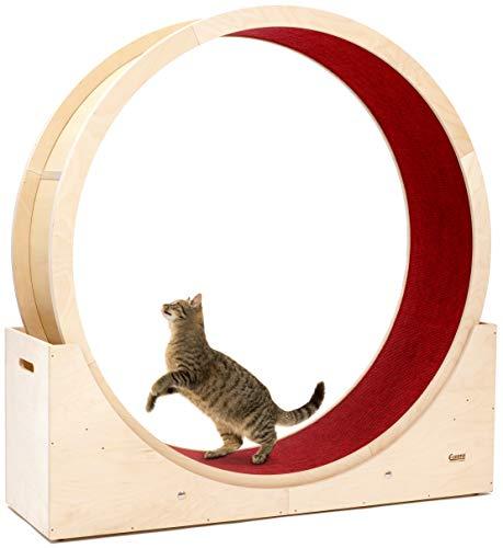Elmato 10701 Simba L Katzenlaufrad komplett montiert deutsche Qualität in Birke Natur, roter Teppich ca. 120cm