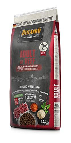 Belcando Adult GF Beef [12,5 kg] getreidefreies Hundefutter | Trockenfutter ohne Getreide | Alleinfuttermittel für ausgewachsene Hunde ab 1 Jahr