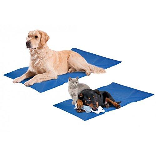 Aktiv Kühlkissen Fresk für Ihren Hund oder Katze funktioniert ohne vorkühlen Größe: L: 90 cm B: 50 cm blau blau Hundematte Kühldecke Kühlmatte