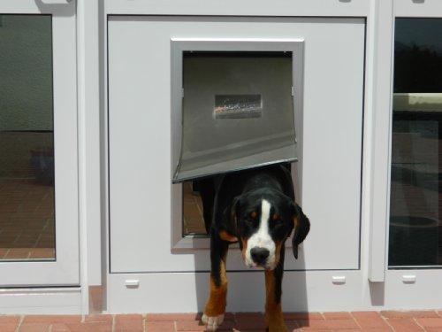 8in1 DD9XL-Pro, isolierte Hundeklappe mit Doppeltürtechnik gegen Zugluft und Kälte