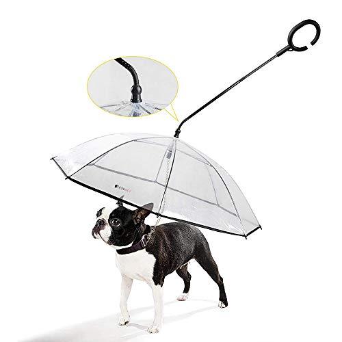 PETEMOO Hund Regenschirm mit Leine für Hundegehen im Freien (Schnee/Regen)