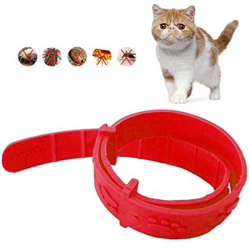 Zecken- und Flohhalsband für Katzen, kleines Haustier, verstellbar, wasserdicht, natürlich, sicher, effektive Entfernung von Flöhen, Läusen, Milben, Mücken