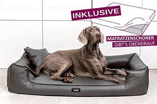 tierlando® Orthopädisches Hundebett Goofy VISCO | ~ inkl. Matratzenschoner ~ | Anti-Haar Kunstleder Hundesofa Hundekorb Gr. L 110cm Graphit Ortho
