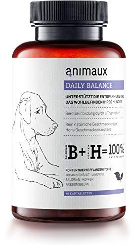 animaux Daily Balance – Kau-Tabletten für Hunde zur Beruhigung & Entspannung mit Baldrian Johanniskraut Lavendel I Pflanzliche Unterstützung als Leckerli bei Angst, Stress & Nervosität I Relax Snack