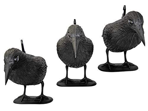 tiroba Premium Taubenschreck Rabe 3er Set - wetterfester Kunststoff - inkl. ebook Vögel vertreiben | Vogelabwehr, natürl. Schädlingsbekämpfung, Schutz vor lästigen Vögeln Tauben, Möwen, Kleinvögel