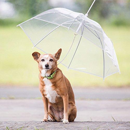 GOODS+GADGETS Transparenter Regenschirm für Hunde Welpen & Haustiere Regenmantel Petumbrella 70cm