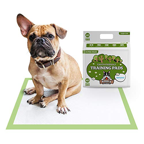 Pogi's Trainingsunterlagen (40 Stück) (60x60cm) — Große, superabsorbierende, erdfreundliche Hundetrainingsunterlagen für kleine bis mittelgroße Hunde
