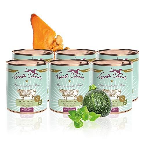 Terra Canis Getreidefreies Nassfutter I Reichhaltiges Premium Hundefutter in echter Lebensmittelqualität Aller Rohstoffe mit Rind, Zucchini, Kürbis & Oregano I 6 x 800g, allergenarm & glutenfrei