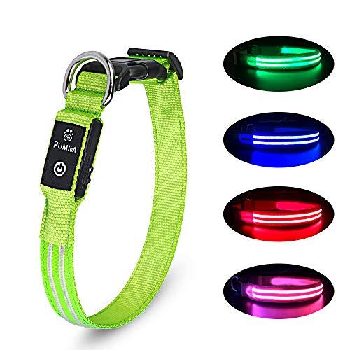 LED Hundehalsband Wiederaufladbare USB Leuchthalsband 100% Wasserdichtes Leuchtendes Hunde Halsband Einstellbare Super Helle für Kleine Mittlere Große Hunde - Grün - M