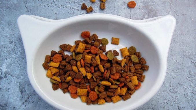 Trockenfutter Katzenernährung und Katzennahrung