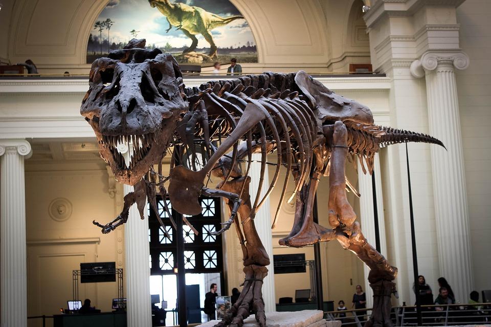 ausgestorbener-dinosaurier