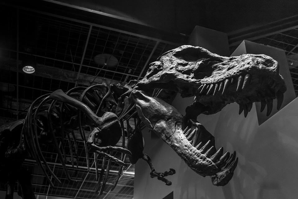 dinosaurier-heute-klone