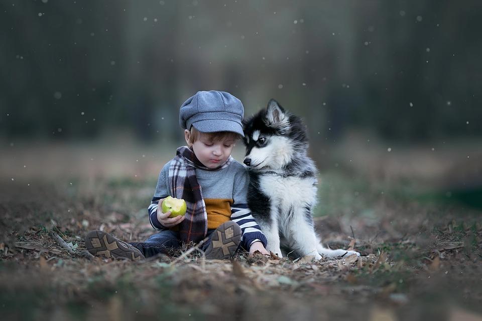 hunde-und-kinder