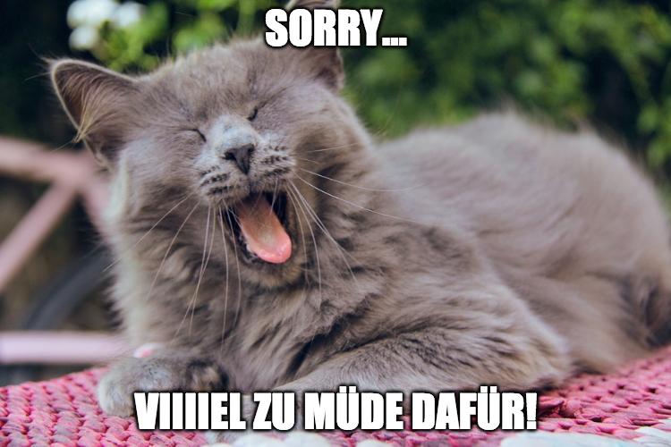 Katzenbild Meme: Katze ist muede.