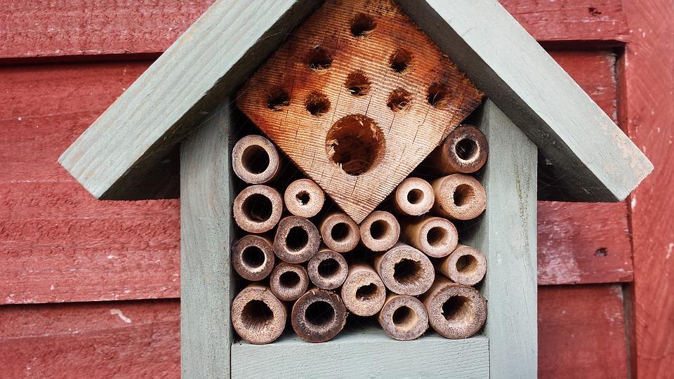 Bienenhaus Bausatz